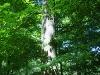 Bild 5 Blick auf ein RuheBiotop